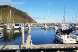 Wirrina Cove Marina