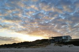 Normanville Surf Club